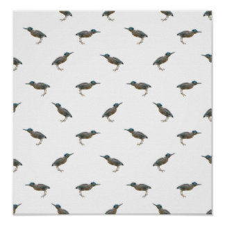 Exotic Birds Motif Pattern Poster