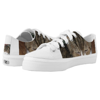 exotic brown tabby printed shoes