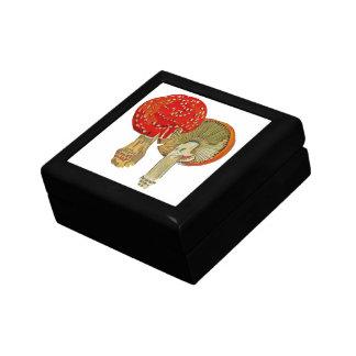 Exotic Flora #11 at SunshineDazzle Gift Box