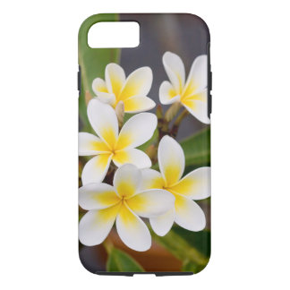 Exotic Frangipani flowers iPhone 8/7 Case