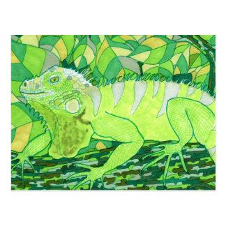 Exotic Iguana Postcard