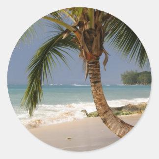 exotic palm tree on beach round sticker