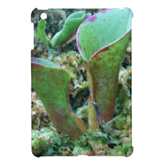 Exotic Plant Karnivoren iPad Mini Covers