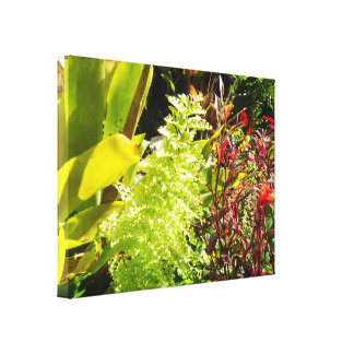 Exotic Plants and Leaves Canvas Print