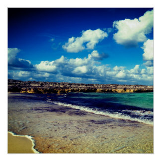 Exotic Rocky Beach Poster