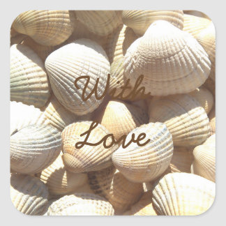 Exotic Tropical Sea Shell Summer Beach Photography Square Sticker