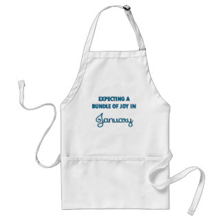 Expecting a bundle of joy in January blue.png Standard Apron