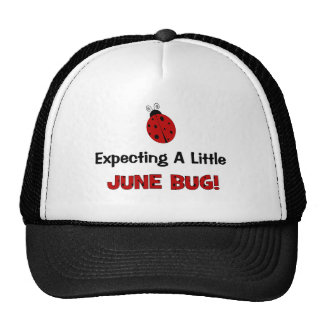 Expecting A Little June Bug Maternity Cap