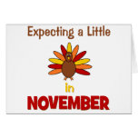 Expecting A Little Turkey in November!