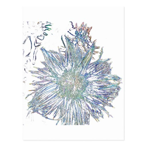 Exploding Thistle Post Card