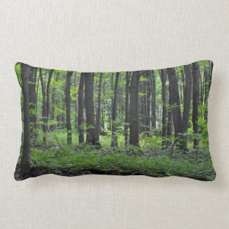 """Explore"" Nature: Throw Pillow"