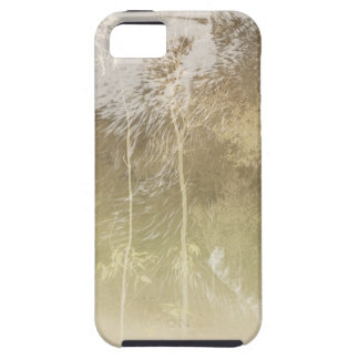 Exposed Bear Case For The iPhone 5