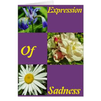 Expression Of Sadness 3 Photo Sympathy Card
