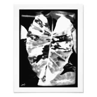 Expressionism Photo Print