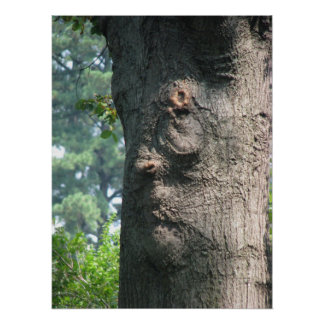 Expressive Tree Poster
