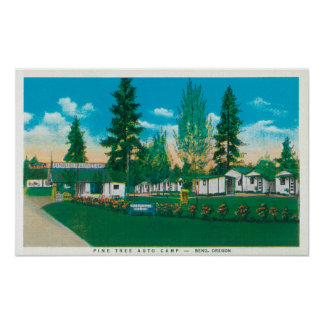 Exterior View of the Pine Tree Auto Camp Posters