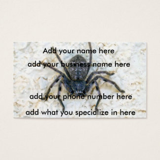 Exterminator,_Huntsman_Spider,_(100)Buisness_Cards Business Card