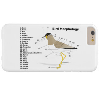 External Morphology of a Bird Vanellus Malabaricus Barely There iPhone 6 Plus Case