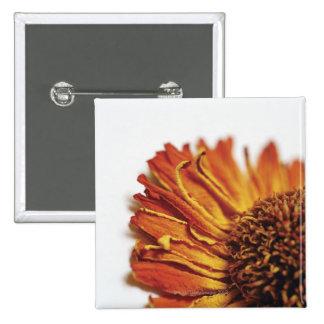 Extreme close-up of dried orange flower 15 cm square badge