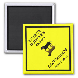 Extreme Cuteness Ahead - dachshund road sign Magnet