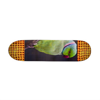 Extreme Sports Tropics Skate Board Deck