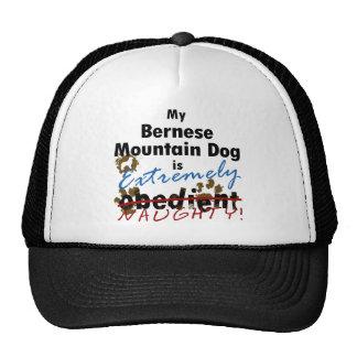 Extremely Naughty Bernese Mountain Dog Cap