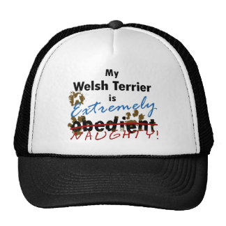 Extremely Naughty Welsh Terrier Mesh Hats