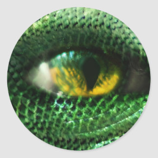 Eye of a.. round sticker