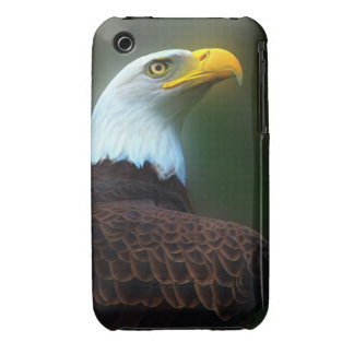 eye of the eagle iPhone 3 cover
