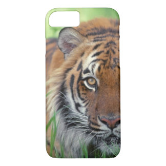 Eye of the Tiger iPhone 7 Case
