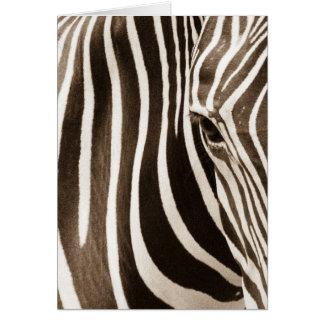 Eye of the Zebra Greeting Card