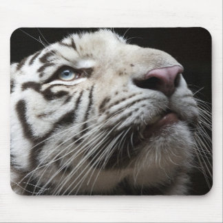 Eye of White Tiger Mouse Pad