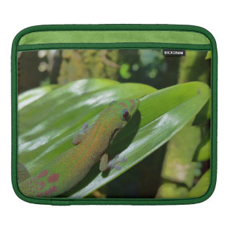 Eyeing the Bug iPad Sleeve