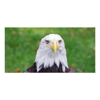 Eyes of an Eagle Card
