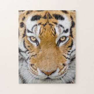 Eyes of the Tiger Jigsaw Puzzle