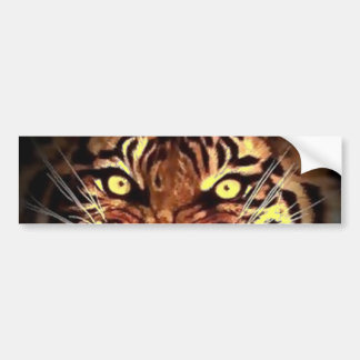 Eyes of Wild Sumatran Tiger Bumper Sticker