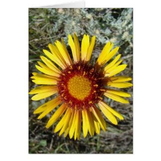 F0001 Yellow Wildflower Greeting Card