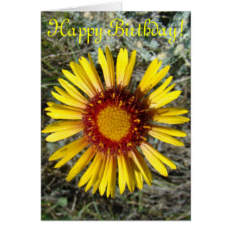 F0001 Yellow Wildflower Gaillardia Greeting Card