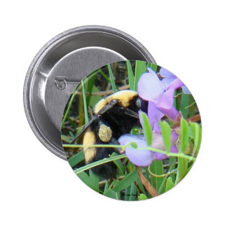 F0002 Bee on Purple Wildflowers button