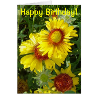 F0006 Yellow Wildflowers Gaillardia Greeting Card
