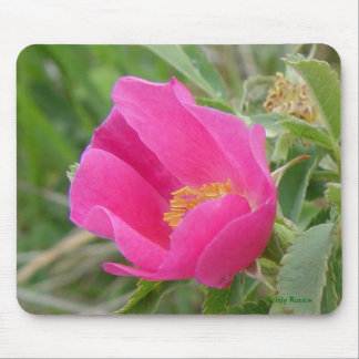 F0007 Wild Rose Mouse Pad