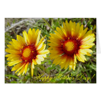 F0008 Yellow Wildflowers Duet Cards