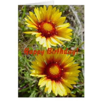 F0008t Yellow Wildflowers Gaillardia Greeting Card