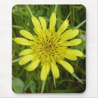F0009 Yellow Wildflower two Mouse Pad