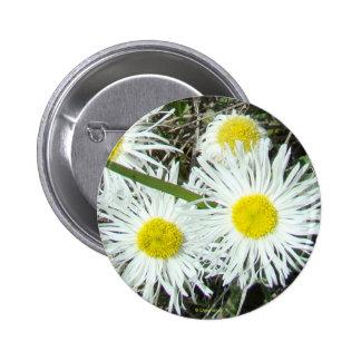 F0010 White Wildflowers button