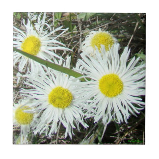 F0010 White Wildflowers Tile