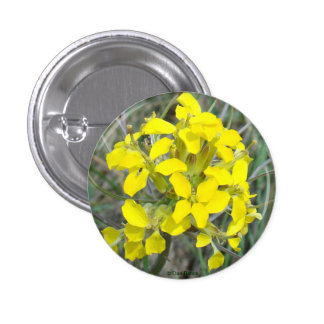 F0014 Yellow Wildflowers Pins