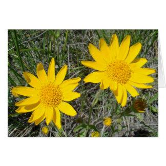 F0015 Yellow Wildflowers Sneezeweed Greeting Card