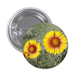 F0017 Yellow Wildflowers Gaillardia Pinback Button