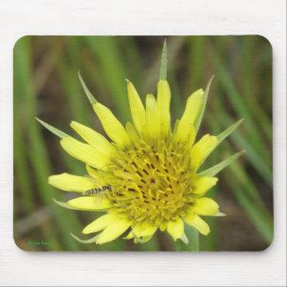 F0041 Yellow Wildflower Goats-beard Mousepad